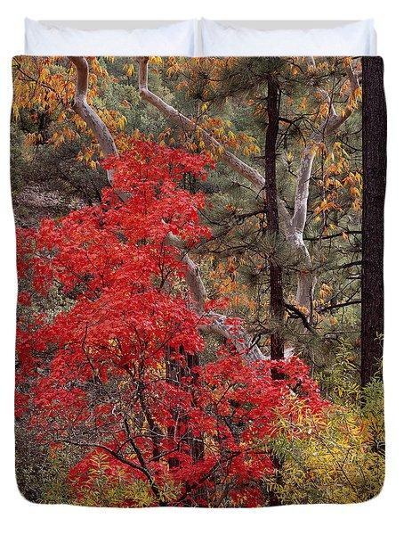 Maple Sycamore Pine Duvet Cover