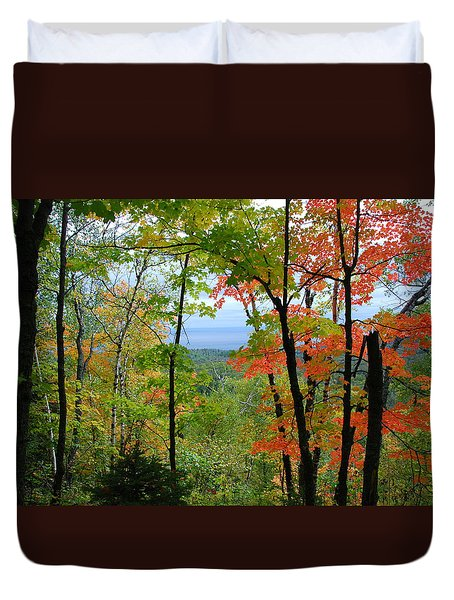 Maples Against Lake Superior - Tettegouche State Park Duvet Cover