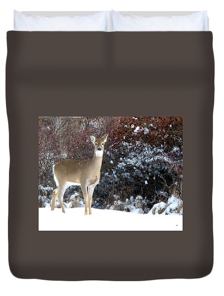 March Snow And A Doe Duvet Cover