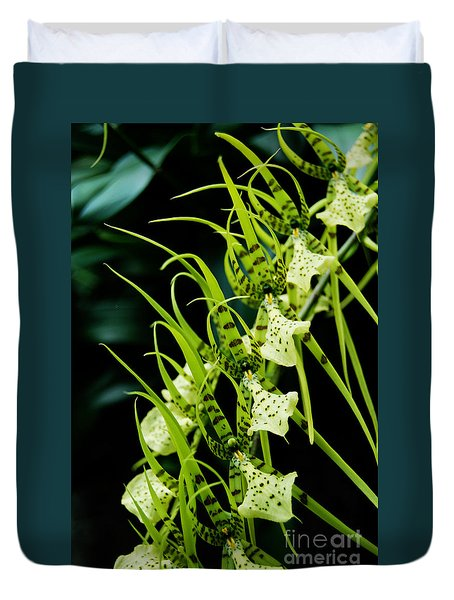 Duvet Cover featuring the photograph Marching Orchids by Eva Kaufman