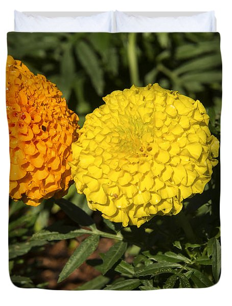 Marigold Siblings  Duvet Cover