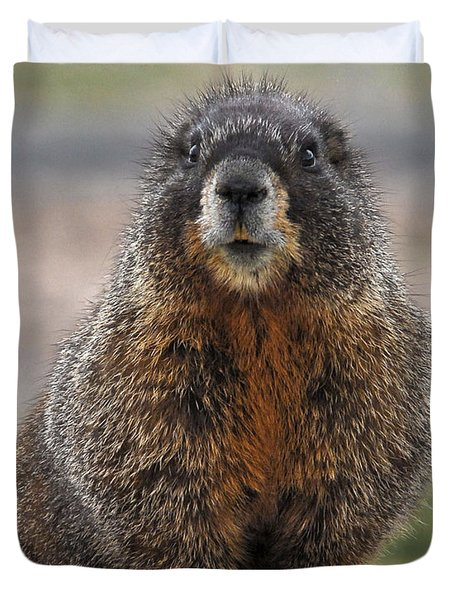 Duvet Cover featuring the photograph Marmot by Mae Wertz