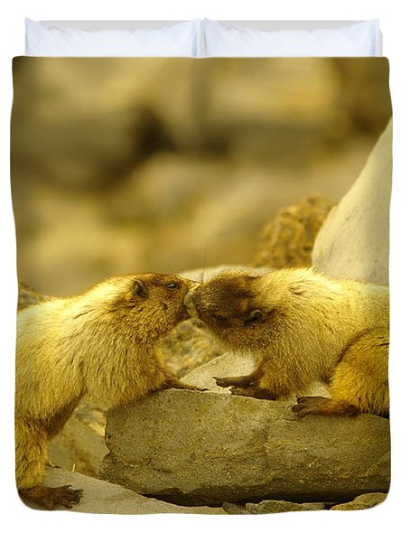 Marmots Kissing Duvet Cover