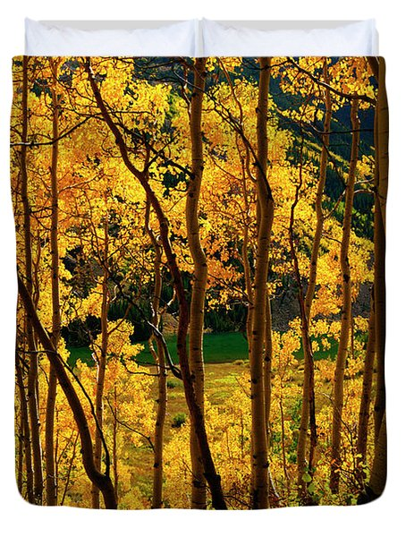 Maroon Lake Gold Duvet Cover by Jeremy Rhoades