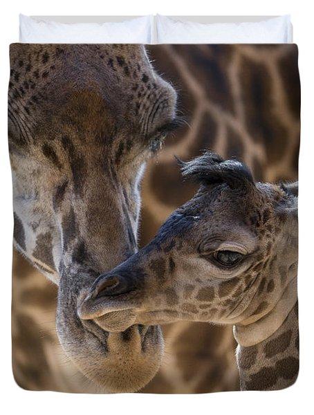 Masai Giraffe And Calf Duvet Cover