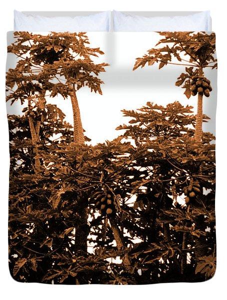 Maui Coconut Palms Duvet Cover by J D Owen
