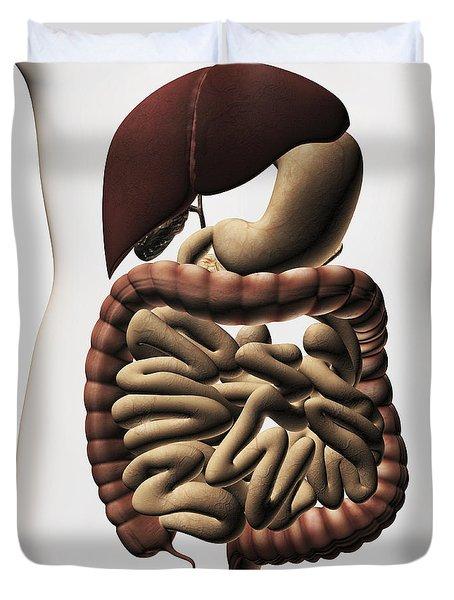 Medical Illustration Showing The Human Duvet Cover