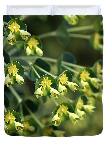 Mediterranean Spurge Duvet Cover by Joy Watson