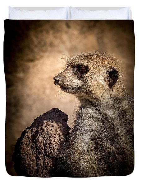 Meerkat 12 Duvet Cover by Ernie Echols