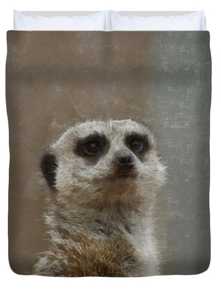Meerkat 5 Duvet Cover by Ernie Echols