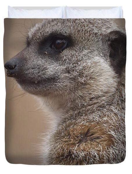 Meerkat 9 Duvet Cover by Ernie Echols
