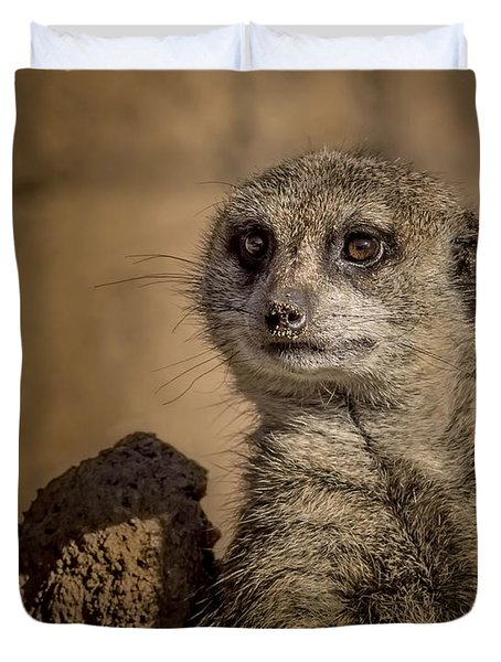 Meerkat Duvet Cover by Ernie Echols