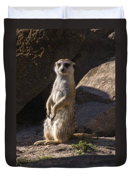 Meerkat Looking Forward Duvet Cover