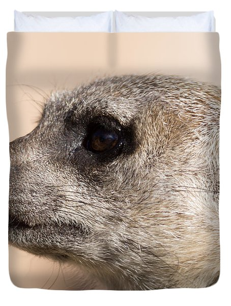 Meerkat Mug Shot Duvet Cover by Ernie Echols