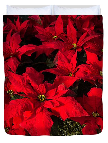 Merry Scarlet Poinsettias Christmas Star Duvet Cover