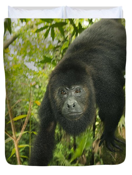 Duvet Cover featuring the photograph Mexican Black Howler Monkey Belize by Kevin Schafer
