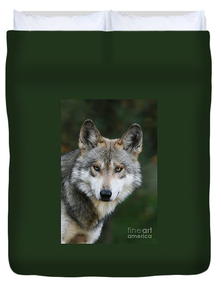 Mexican Wolf #3 Duvet Cover