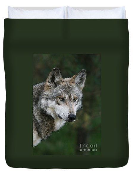 Mexican Wolf #4 Duvet Cover