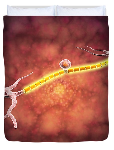 Microscopic View Of A Unipolar Neuron Duvet Cover by Stocktrek Images