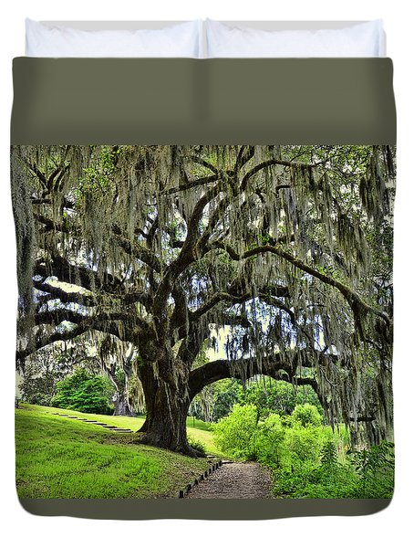 Middleton Place Oak  Duvet Cover by Allen Beatty