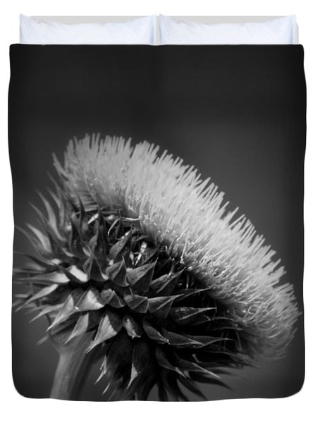 Milk Thistle Bw Duvet Cover by Maria Urso