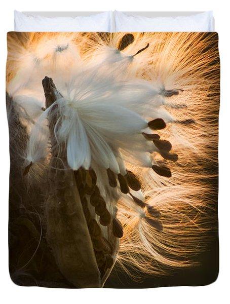 Milkweed Seed Pod Duvet Cover by Adam Romanowicz