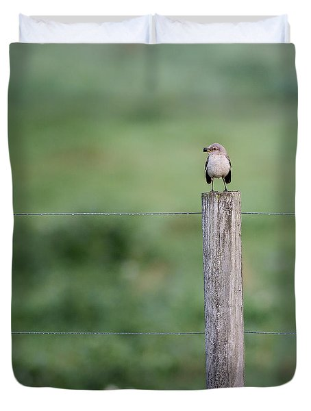 Minimalism Mockingbird Duvet Cover by Bill Wakeley