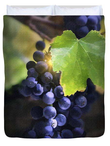 Mission Grapes II Duvet Cover by Sharon Foster