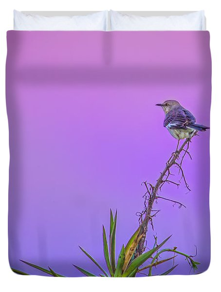 Duvet Cover featuring the photograph Mocking The Yucca by Rob Sellers