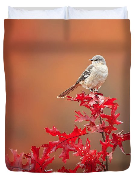 Mockingbird Autumn Square Duvet Cover by Bill Wakeley