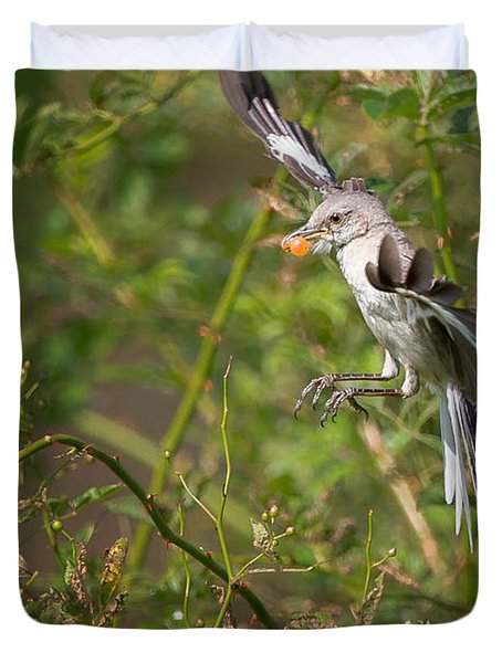 Mockingbird Duvet Cover by Bill Wakeley