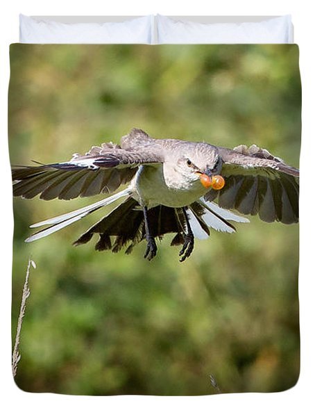 Mockingbird In Flight Duvet Cover by Bill Wakeley