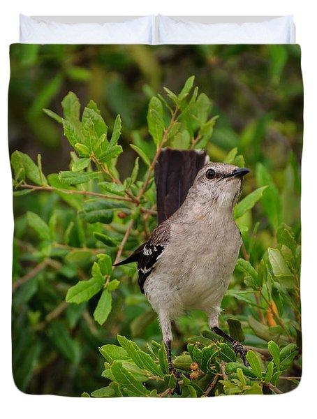 Mockingbird In Tree Duvet Cover
