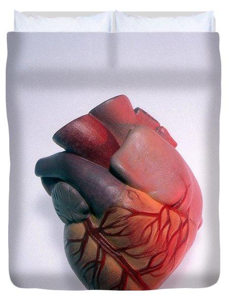Model Of Heart Duvet Cover