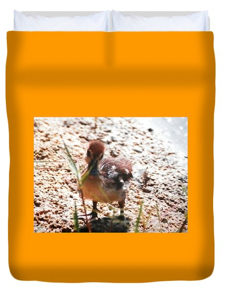 Duvet Cover featuring the photograph Duckling Searching by Belinda Lee
