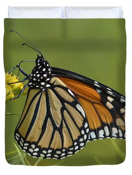 Monarch 2014 Duvet Cover