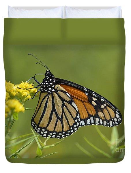 Monarch 2014 Duvet Cover by Randy Bodkins