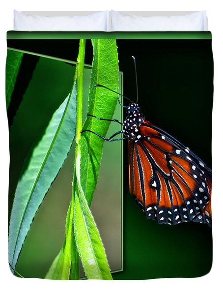 Monarch Butterfly 04 Duvet Cover by Thomas Woolworth