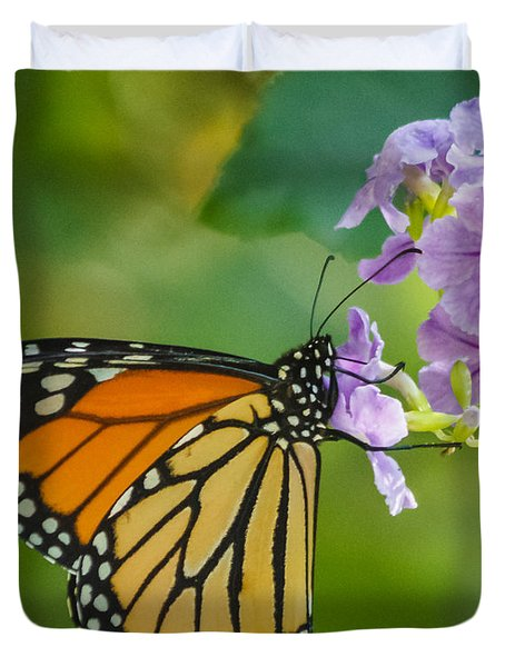 Monarch Butterfly Duvet Cover by Jane Luxton
