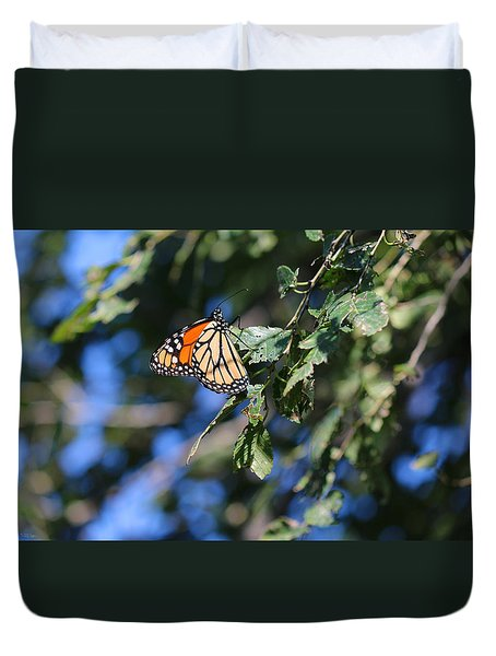 Monarch Butterfly Duvet Cover by Rebecca Davis