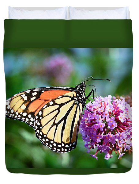 Monarch Butterfly Soaking Up The Sun Duvet Cover