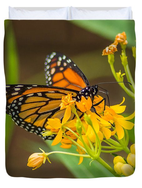 Duvet Cover featuring the photograph Monarch by Jane Luxton