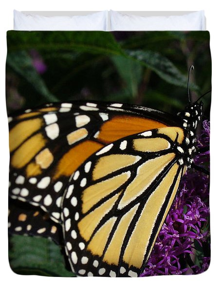 Duvet Cover featuring the photograph Monarch by Lingfai Leung