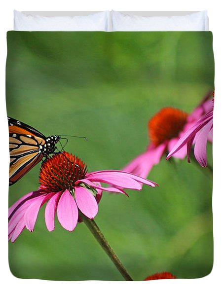 Monarch On Garden Coneflowers Duvet Cover