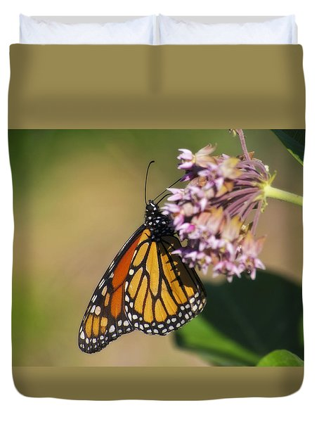 Monarch On Milkweed Duvet Cover by Shelly Gunderson
