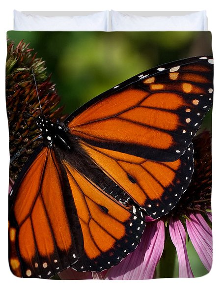 Duvet Cover featuring the photograph Monarch On Purple Coneflower by Barbara McMahon