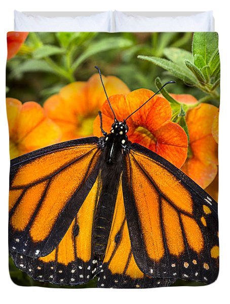Monarch Resting Duvet Cover