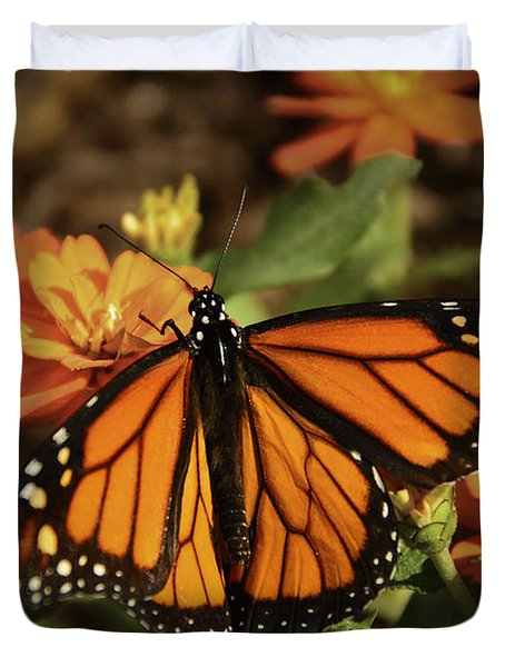 Monarch Spotlight. Duvet Cover