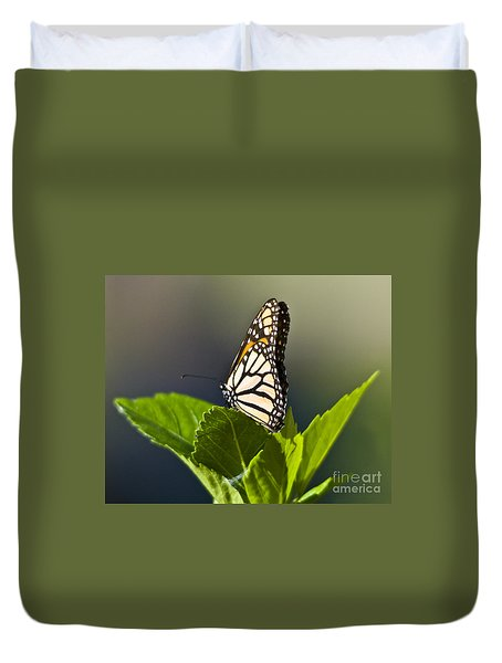 Monark Butterfly No. 2 Duvet Cover
