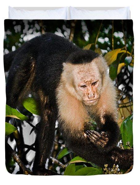 Monkey Business  Duvet Cover by Gary Keesler
